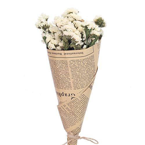 NAHUAA Flores Naturales Flores secas Flores secas Decoración para...