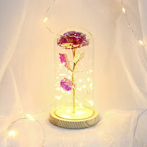 Rosa Bella y Bestia Flor Artificial con Luz LED Kit Rosa de Seda en Cúpula de Cristal Rosa Encantada Decoración Regalo Romantico para Día de San Valentín Aniversario Boda Cumpleaños (Rosa , 22*11.5CM)