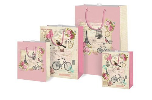 Girls 2 x Vintage Shabby Chic Design Small Gift Bag & Tag Birthday by The Home Fusion Company