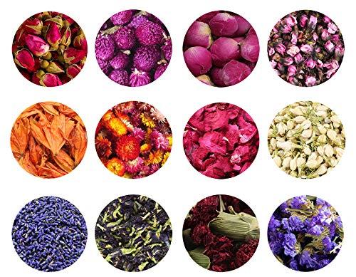 TooGet Flores Secas y Hierbas Accesorios Decoraciones Flor Natural...