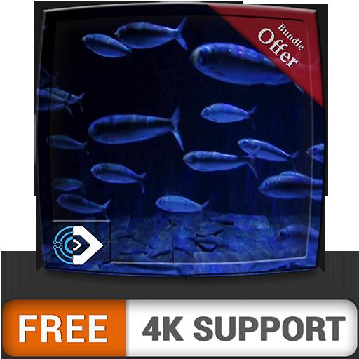 Acuario de peces en HD gratis: disfruta de la carrera de peces en tu...