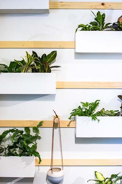 Estante con macetas colgantes de plantas de interior