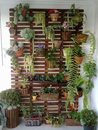 Arreglar una pared verde es una gran idea para dar una segunda vida a las plantas colgantes.  Esto aclara la vista y da una impresión de opulencia muy seductora.
