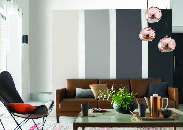 Para una decoración moderna, el color de una sala de estar declinado en tonos de gris da relieve a la zona del sofá.  Aquí, 4 colores de pintura gris, desde el gris perla hasta el gris grafito Paint Colors Collection Castorama.