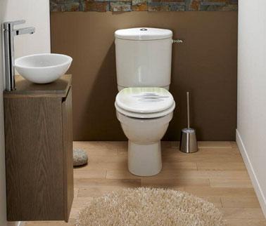 Decoración de WC refinada con colores y materiales naturales: pared de piedra y mueble de lavabo de madera.  Pisos flotantes de roble claro.  pintura gris pardo asociada con un gris perla