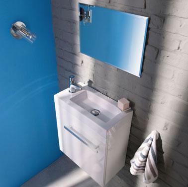 Decoración wc, pared de ladrillo cubierta con pintura gris que soporta la unidad de almacenamiento y el lavabo, sobre un gran espejo que refleja la pintura azul pacífica de la otra pared en Castorama