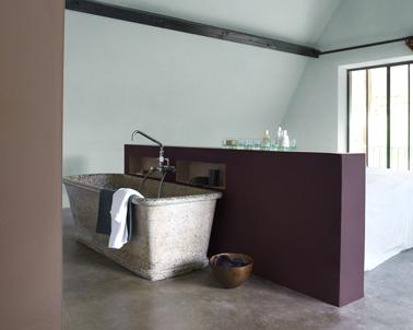 Espacio de baño en dormitorio.  Pared de división de color ciruela, pintura de pared verde mar y gris pardo