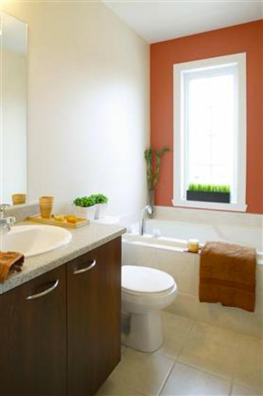 Pintura de baño, paleta de colores tierra de cocina roja y blanca complementada con toques de marrón y verde