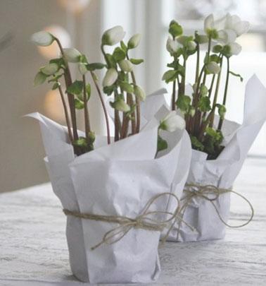 En Navidad, una maceta blanca con decoración festiva realizada con papel de regalo blanco y cordel para decorar el centro de mesa con macetas de rosas navideñas