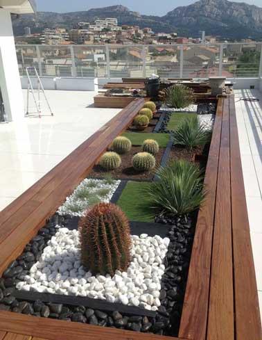 Se planta un lecho de plantas exóticas en una gran maceta de madera exótica.  Estas plantas resistentes soportan bien la exposición total al sol de esta azotea.