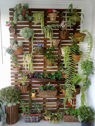 Muro verde realizado con tablones palet.  Desmontados y fijados juntos, luego se barnizan.  Las plantas en macetas y las macetas están aseguradas con ganchos.