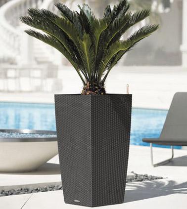 ¡Funcional y de diseño, esta maceta de resina de color natural te hará feliz y embellecerá tu decoración ya sea en la terraza o en el jardín!