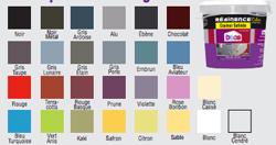 Carta de colores de 21 colores de pintura Resin Color para revestimientos Résinence