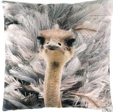 Bonita idea de regalo con este cojín, estampado de avestruz.  Decoración envolvente en un sofá blanco o en tonos naturales, este cojín es perfecto como elemento decorativo.  Cojín visto en Mondesign.com de 48 a 68 €