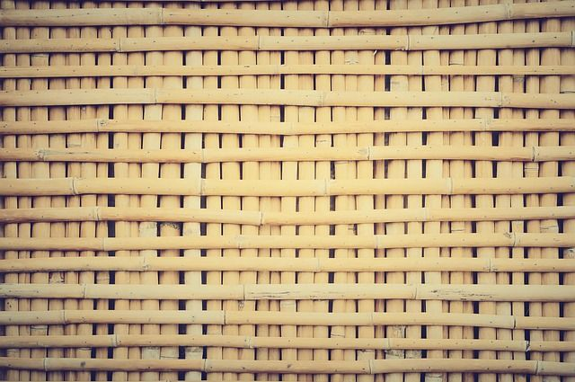 Bamboo_RenoQuotes.com