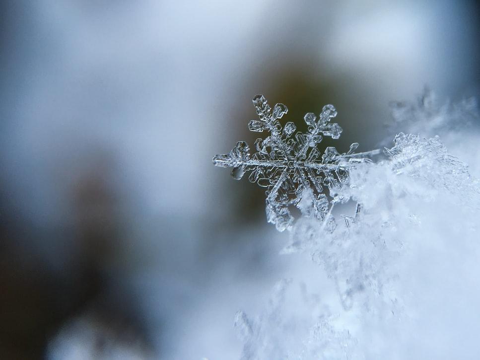 cotización snowflake_Renovation