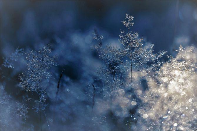 ventana en invierno_Cita de renovación