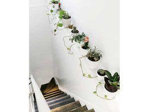 Coloca plantas a lo largo de un zócalo en la escalera blanca para darle color.  Una idea barata de decoración de escaleras para hacer con macetas de cerámica blanca.