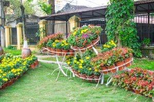 Tendencias de diseño de jardines [anual]