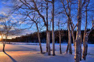 Cómo reducir su factura de calefacción en invierno