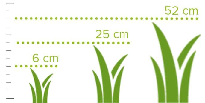 diferentes alturas del césped artificial