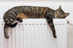 ¿Cómo elegir un calentador eléctrico?