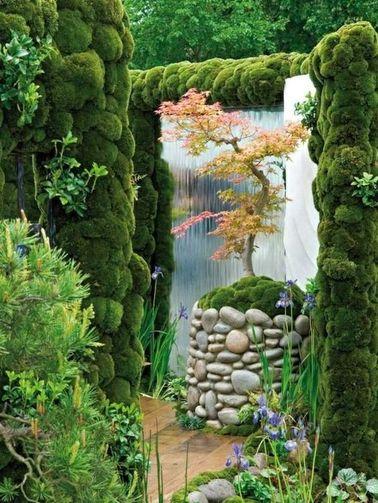 ¡Ningún jardín zen sin arce japonés, un árbol mítico del sol naciente con hojas delicadas!  Contemplarlo nos invita de inmediato a la calma y la meditación.