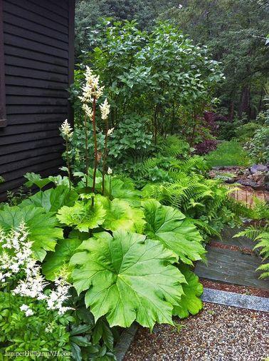 El jardín zen se caracteriza por matas de plantas que interactúan y forman una unidad a pesar de su diversidad.  Este desequilibrio constante es típico del jardín japonés.