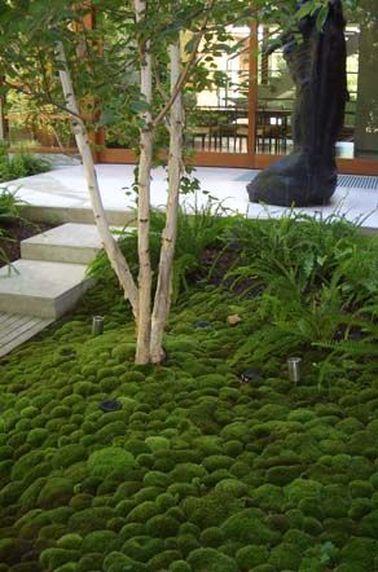La belleza del jardín zen también reside en sus refinados suelos.  Cubiertos con grava o musgo, ¡siempre se ven limpios y ordenados!